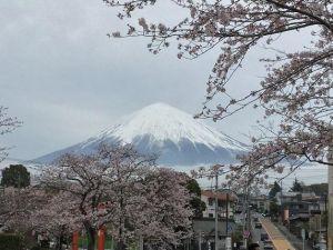 japonia_fuji.jpg